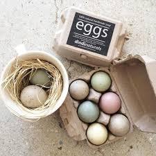 Dindi Naturals Egg Soap – 1/2 Dozen